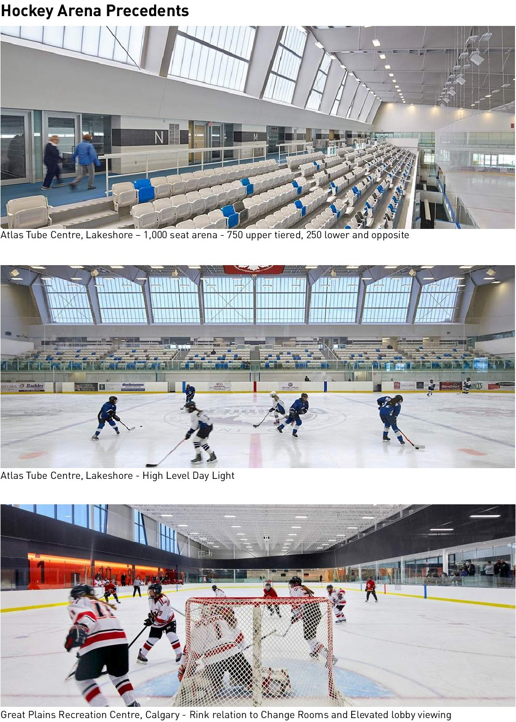 Hockey-Arena-Precedents